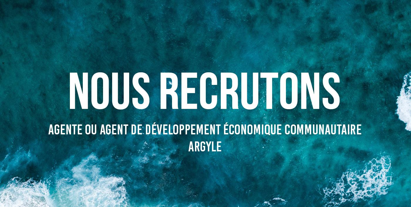 Nous recrutons agent immigration eco